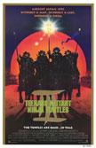 Teenage Mutant Ninja Turtles III Movie Poster