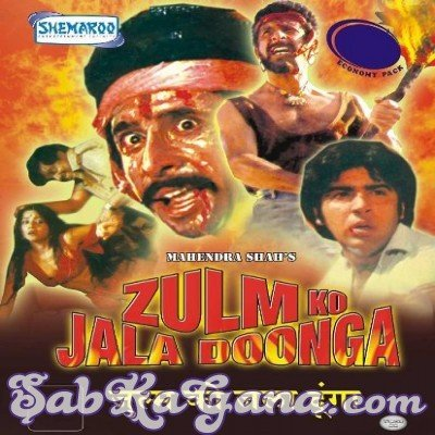 Zulm Ko Jala Doonga Movie Poster