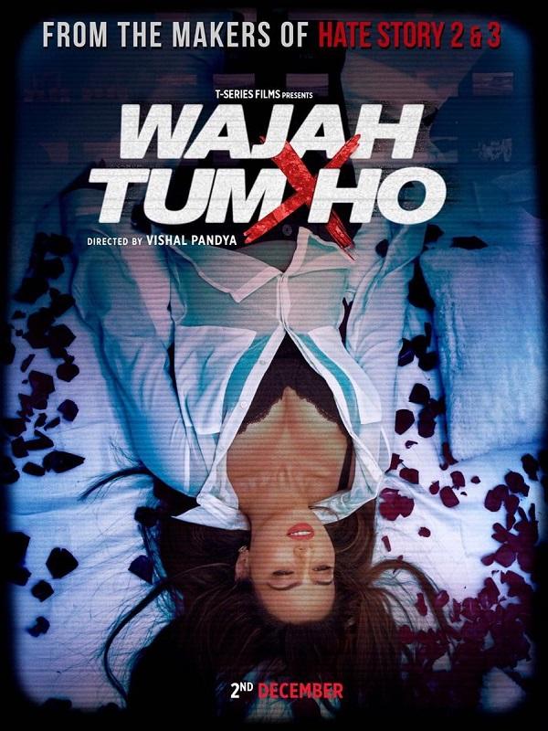 Wajah Tum Ho (2016) First Look Poster