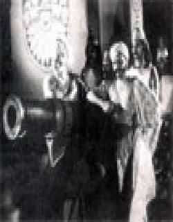 Rajrani Meera (1933)