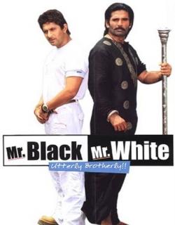 Mr. White Mr. Black (2008) - Hindi
