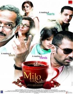 Tum Milo Toh Sahi (2010) - Hindi