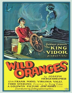 Wild Oranges Movie Poster