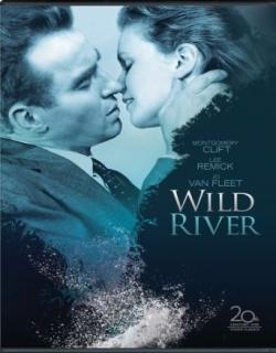 Wild River (1960) - English