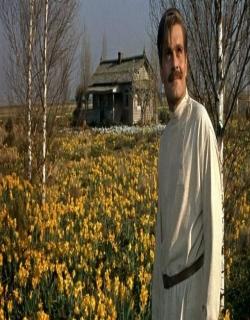 Doctor Zhivago (1965) - English