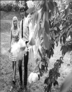 Pretty Poison (1968) - English