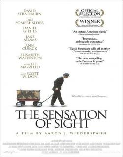 The Sensation of Sight (2006) - English