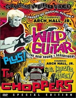 Wild Guitar Movie Poster