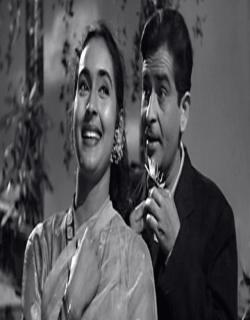 Anari (1959) - Hindi