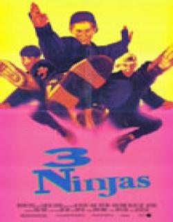3 Ninjas (1992) - English