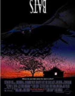 Bats (1999) - English