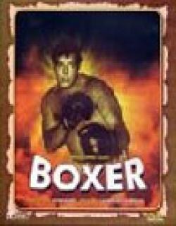 Boxer (1965)