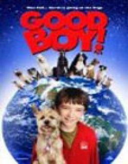 Good Boy! Movie Poster