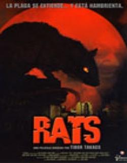 Rats (2003) - English