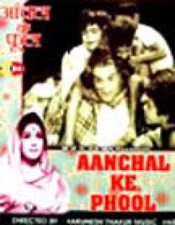 Aanchal Ke Phool (1968)