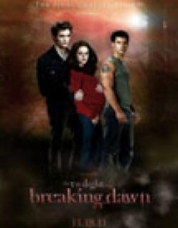 The Twilight Saga: Breaking Dawn - Part 1 (2011) - English