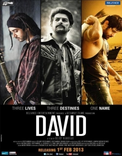 David (2013) - Hindi
