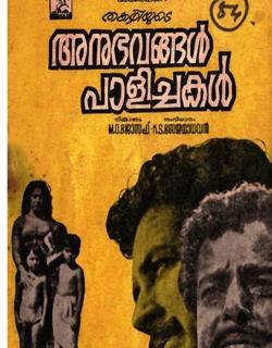 Anubhavangal Palichakal (1971)