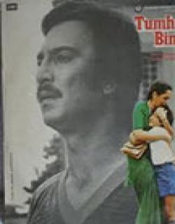Tumhare Bina (1982) - Hindi