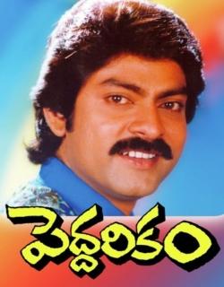 Peddarikam (1992)