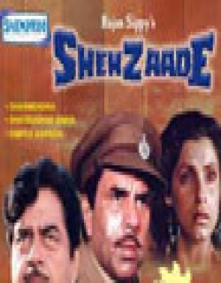 Shehzaade (1989) - Hindi