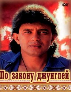 Shikari (1991) - Hindi