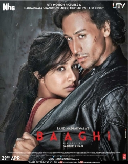 Baaghi (2016) - Hindi