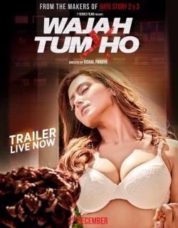 Wajah Tum Ho (2016) - Hindi