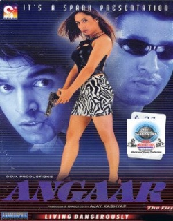 Angaar (The Fire) (2002)