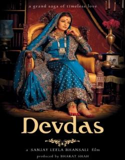 Devdas (2002) - Hindi