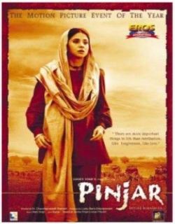 Pinjar (2003) - Hindi