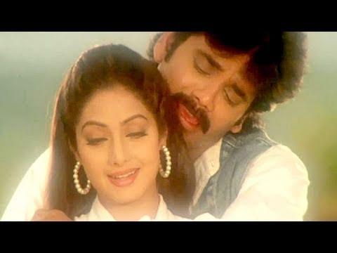Jaanum Meri Jaanum - Sridevi, Nagarjuna, Mr Bechara Song