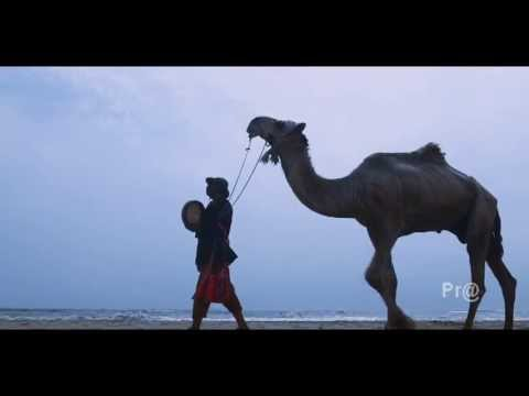 allahu akbar calling bell malayalam movie song director Kollam Ajith