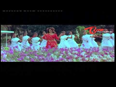 Bangaru Mogudu Songs - Suman - Bhanu Priya - Malasri - 02