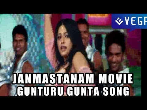 Janmasthanam Movie Songs - Gunturu Gunta Song