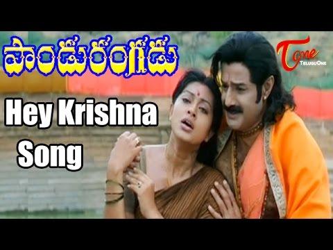 Pandurangadu - Hey Krishna Mukunda Murari - Bala Krishna - Sneha - Devotional Song