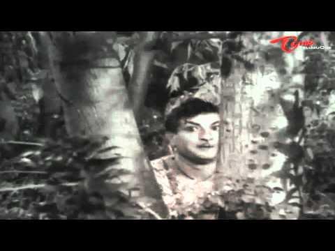 Bandipotu Songs - Vagala Raanivi Neeve - NTR - Krishna Kumari