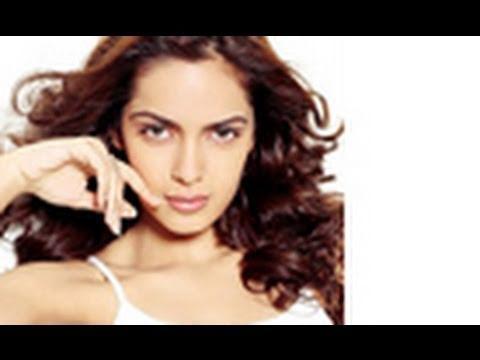 Jacqueline Fernandes, Zarine Khan & Shazahn To Look Hot In Housefull 2