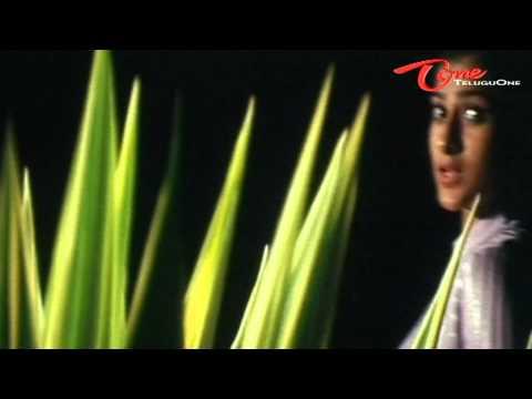 Cash - Nuvvu Nenani Verukadani - Melody Song