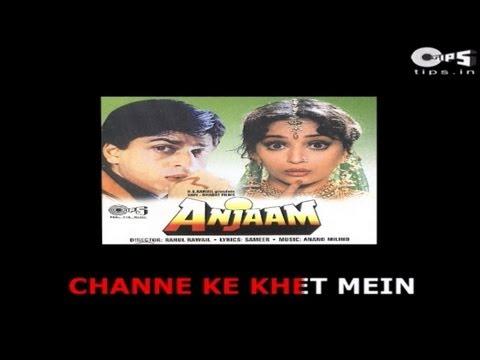 Channe Ke Khet Mein with Lyrics - Anjaam - Madhuri Dixit - Sing Along