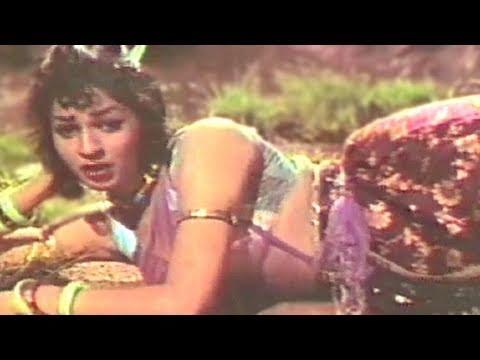 Tu Aaye Na Aaye Magar Jaanewale - Lata Mangeshkar, Payal Ki Jhankar Song