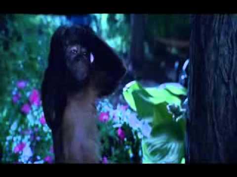Zookeeper International Trailer - English