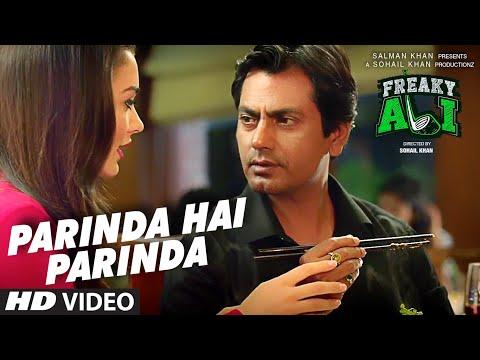 PARINDA HAI PARINDA Video Song - FREAKY ALI