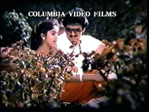 Tamil Movie Song - Pookkalai Parikkaatheergal - Maalai Ennai Vaattuthu